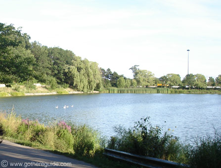 high_park_grenadier_pond_toronto